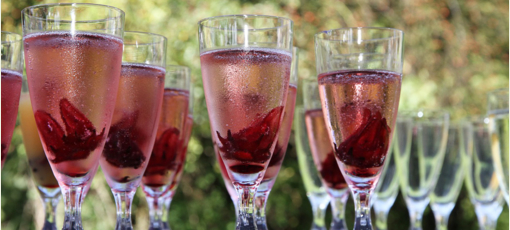 Find the best rosé Champagnes with GAYOT's guide
