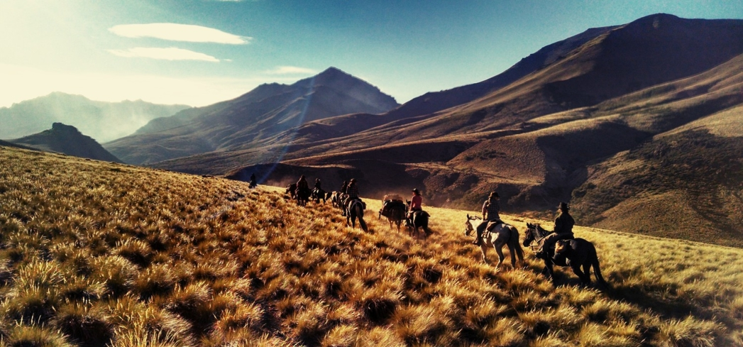 Let GAYOT guide you to the most luxurious ranches around the planet