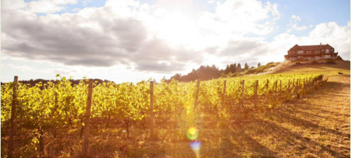 Youngberg Hill Vineyard and Inn in McMinnville, Oregon