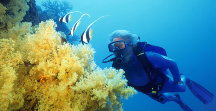 The scuba diving excursion