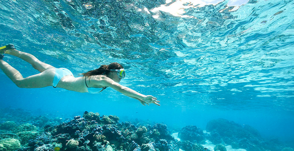 Snorkeling in the water at Sofitel Moorea Ia Ora Beach Resort