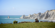 Horse Treks at The Farm at Cape Kidnappers