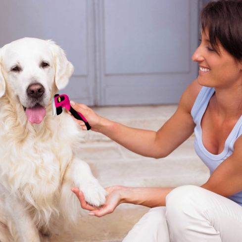 Keep your dog's fur coat looking neat and shiny with Dak Pets Grooming Tool and Brush