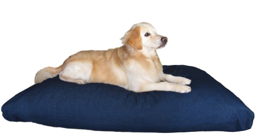 Your furry friend will sleep soundly on the DogBed4Less Memory Foam Dog Bed