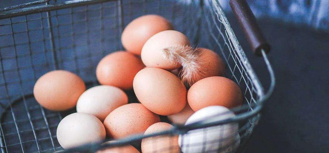 Eggs are a good source of protein and have other health benefits