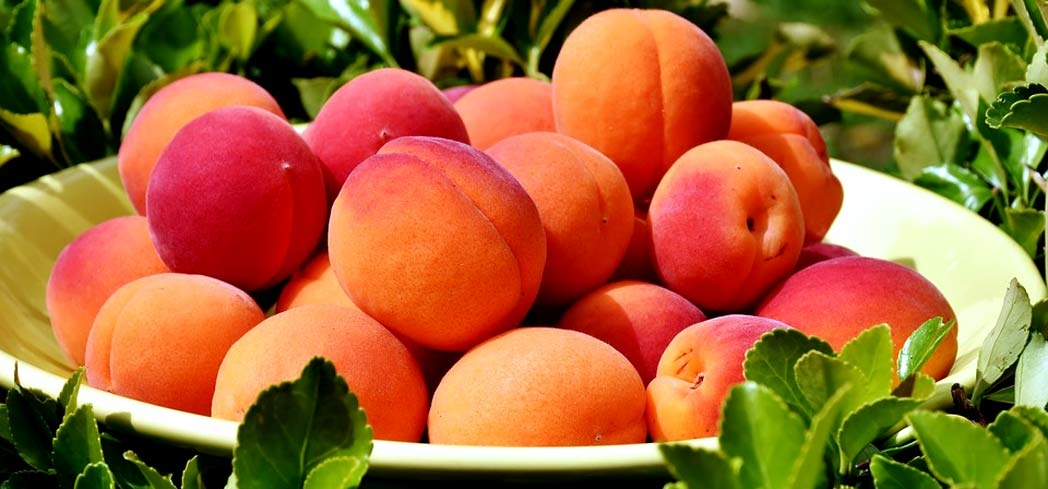 Peaches are packed with fiber, vitamins, minerals and carotenoids.
