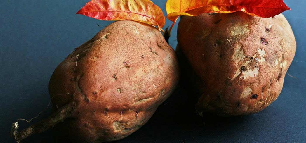 Learn about the many health benefits you can enjoy from eating sweet potatoes and yams