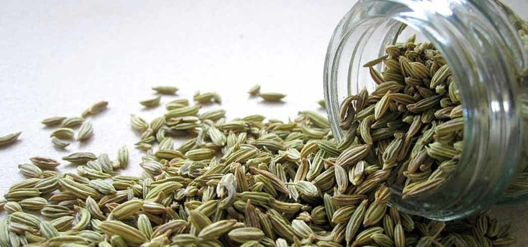 Fennel is a great detox food