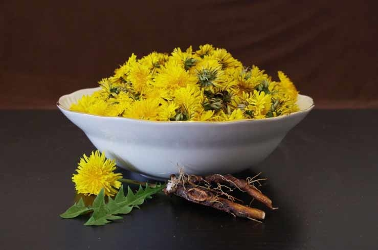 Dandelion root can help improve kidney and liver function, as well as lower blood pressure
