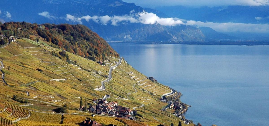 Lavaux Vineyards in Lake Geneva, Switzerland is a UNESCO World Heritage Site