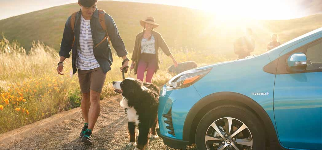 Find out why the 2018 Prius C is one of GAYOT's Best Dog-Friendly Cars