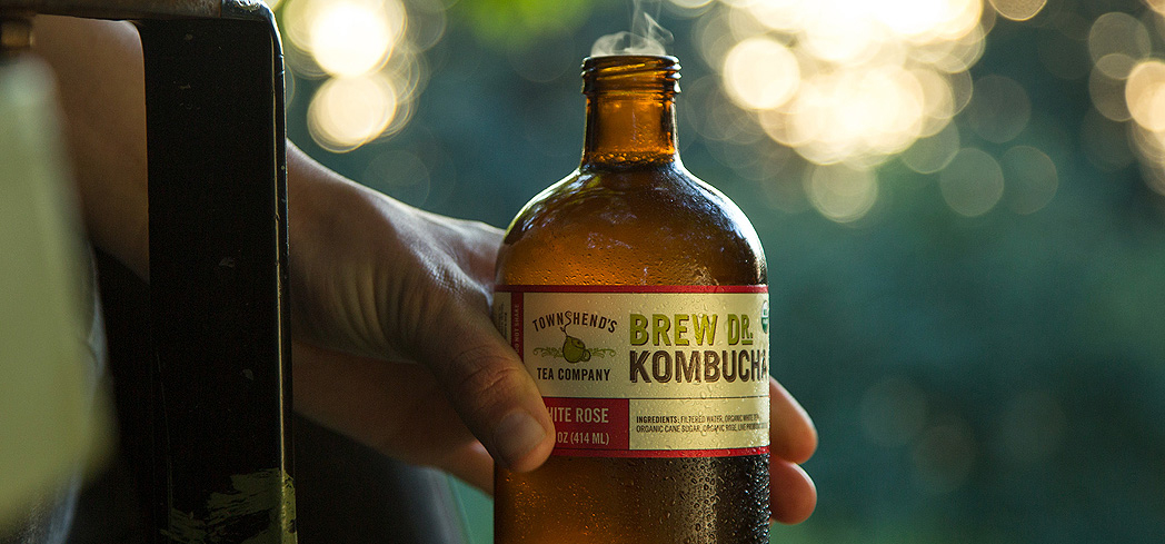 GAYOT has uncovered the best-tasting kombuchas on the market