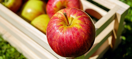 An apple a day really can keep the doctor away
