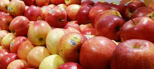 Learn more about the health benefits of apples