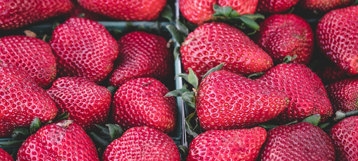 Learn more about the health benefits of strawberries