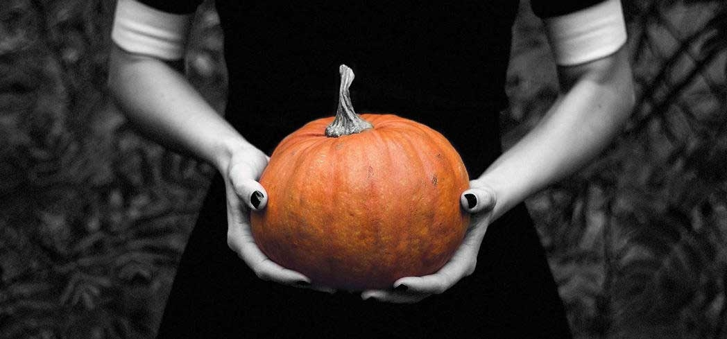 Find the most spooktacular ways to celebrate Halloween