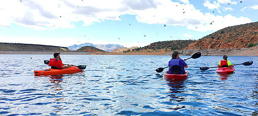 Try kayaking at Movara Fitness Resort, one of GAYOT's Top 10 Destination Spas in the US