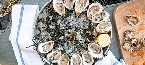 Enjoy oysters at Grand Banks, one of GAYOT's Top 10 Outdoor Dining Restaurants in the US (Photo credit: Alexander Pincus)