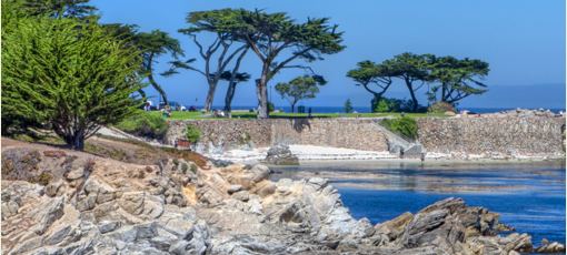 Find the majesty of California's Monterey Peninsula with GAYOT's 72-Hour City Guide