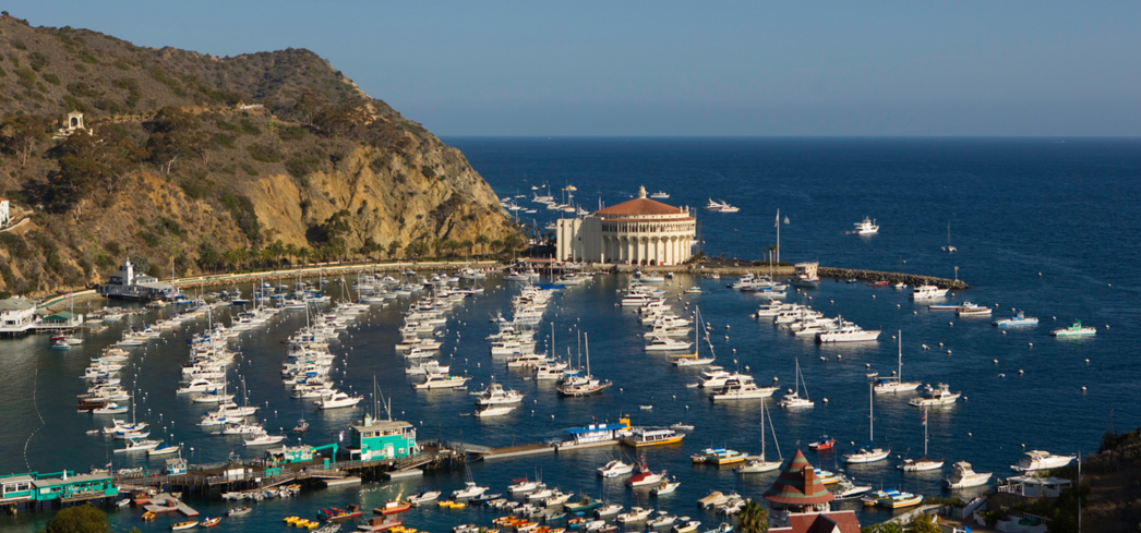 A view of Avalon harbor on Catalina Island