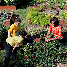First lady Michelle Obama in the White House garden