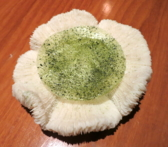 Atelier Crenn: Crystal wafer and matcha powder dessert served on a mushroom coral