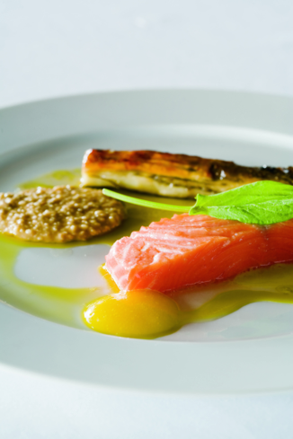Addison: Scottish Salmon
