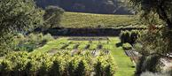 The French Laundry: Culinary Garden (photo Deborah Jones)