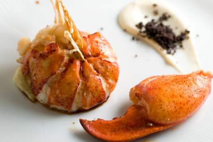 L'Espalier Butter Poached Maine Lobster with Fennel Brandade, Almond Herb Jus, Licorous Sugar and Dehydrated Fennel