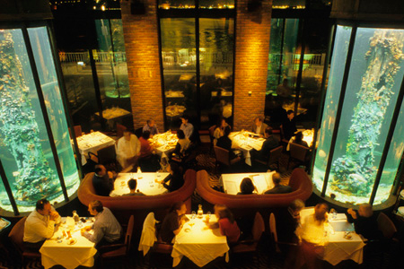 Dining room of Waterbar in San Francisco, CA