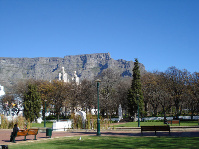 The Company Garden in Cape Town is a popular tourist spot