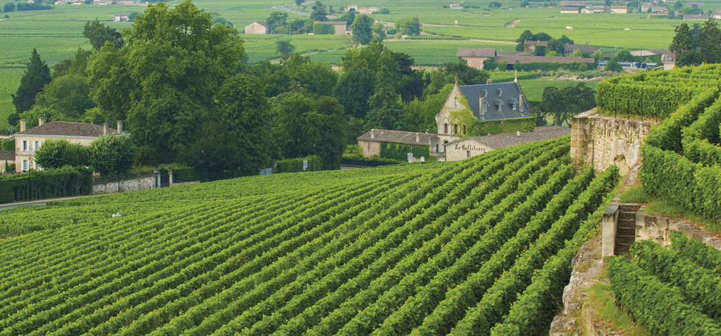 The taste bud-dazzling wines make Bordeaux Route des Châteaux possibly the most desired strip of wine country
