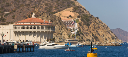Find the best things to do while exploring Catalina Island