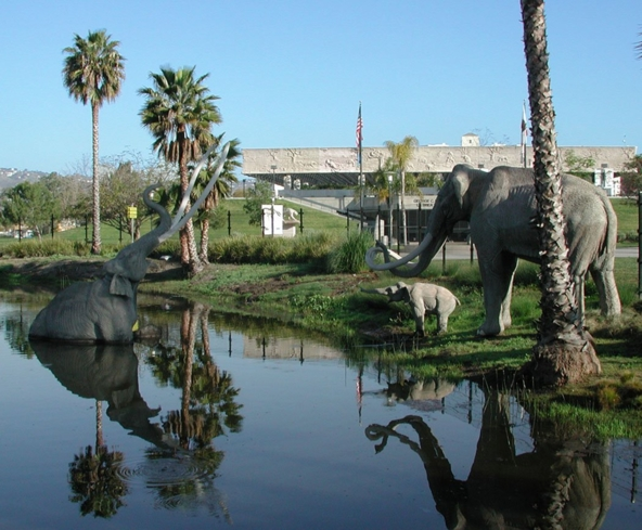 The La Brea Tar Pits in Los Angeles, California