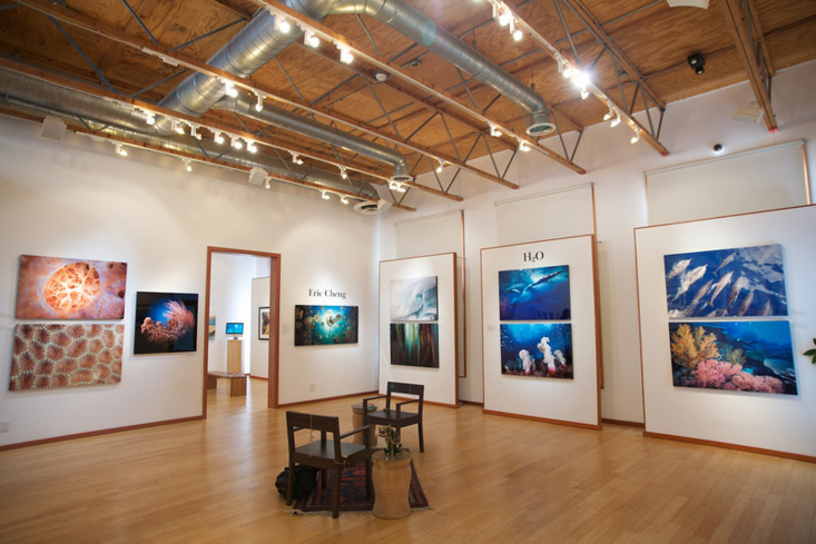 Inside The G2 Gallery in Venice on Abbot Kinney Blvd.