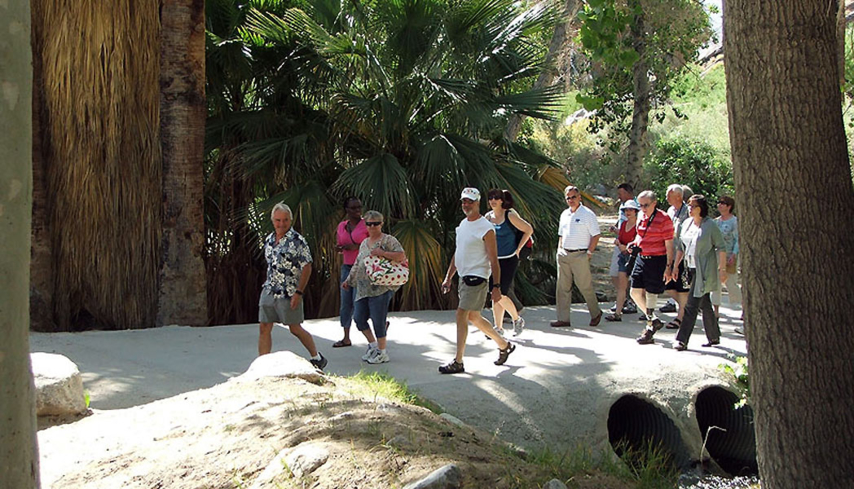 Explore Indian Canyon with The Best of the Best Tours in Palm Springs, California