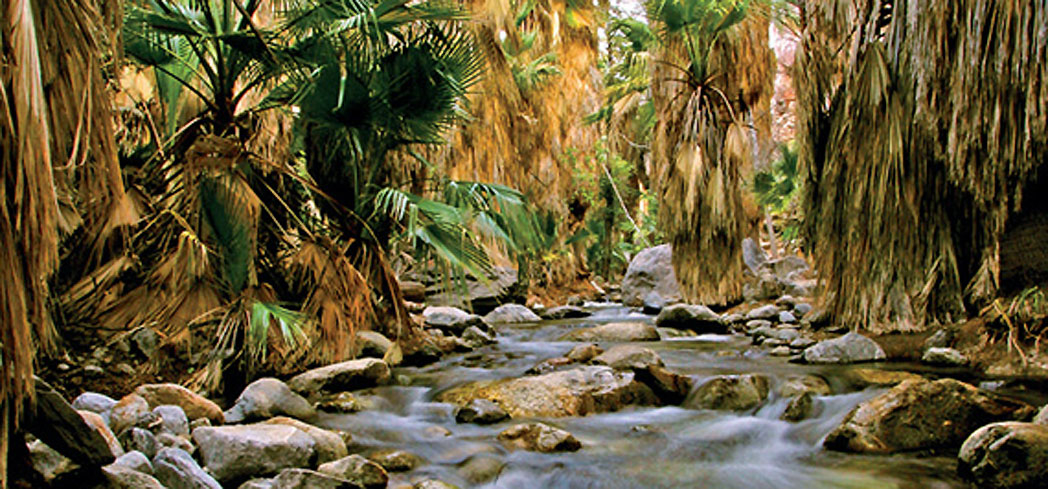 Tahquitz Canyon in Palm Springs, California