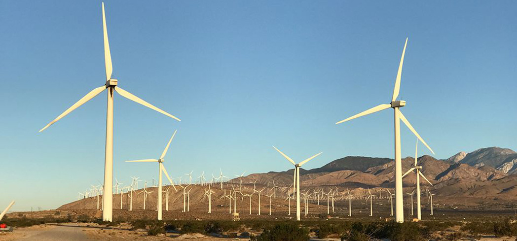 Windmills Tour Palm Springs offers a tour of the sleek and towering beacons stretched along Interstate 10