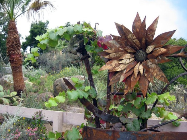 A look inside the Santa Barbara Botanic Garden