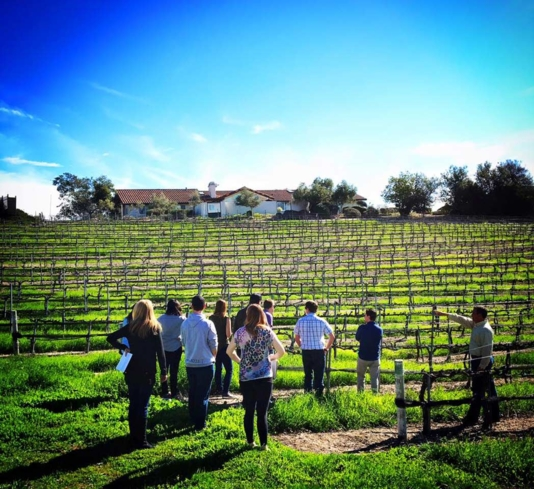 Visit environmentally friendly wineries in Santa Barbara with Sustainable Vine Wine Tours