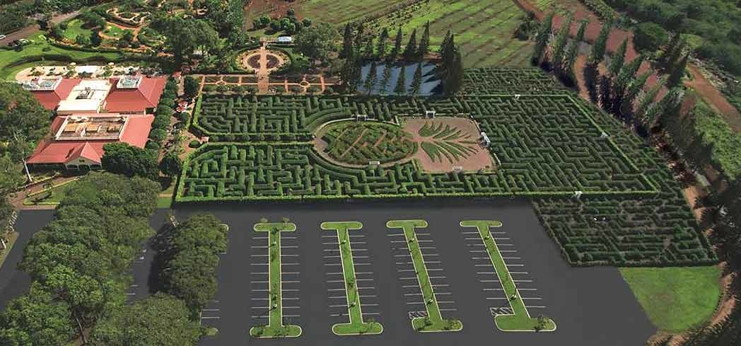 An aerial view of Dole Pineapple Plantation in Oahu, Hawaii