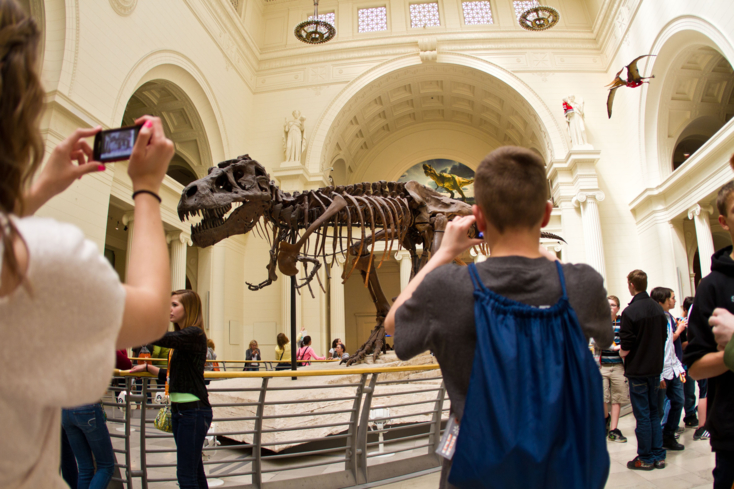 The Field Museum's T-Rex
