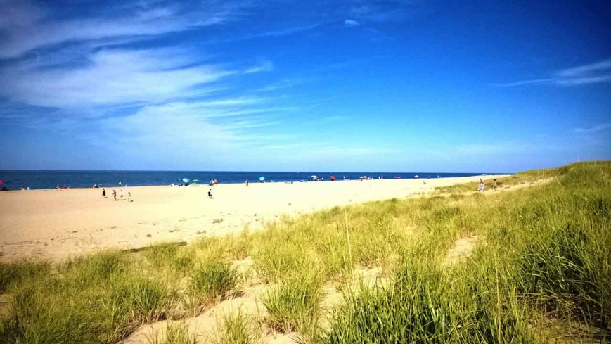 Walk the sands of Race Point Beach in Provincetown