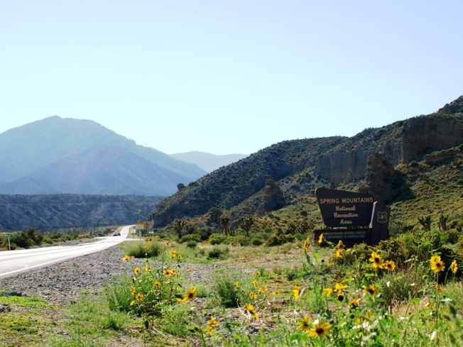 Take a trip to Mount Charleston in the Toiyabe National Forest's Spring Mountain Recreation Area