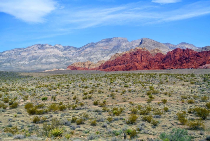 Red Rock Canyon National Conservation Area is a wonderful scenic escape from the Strip
