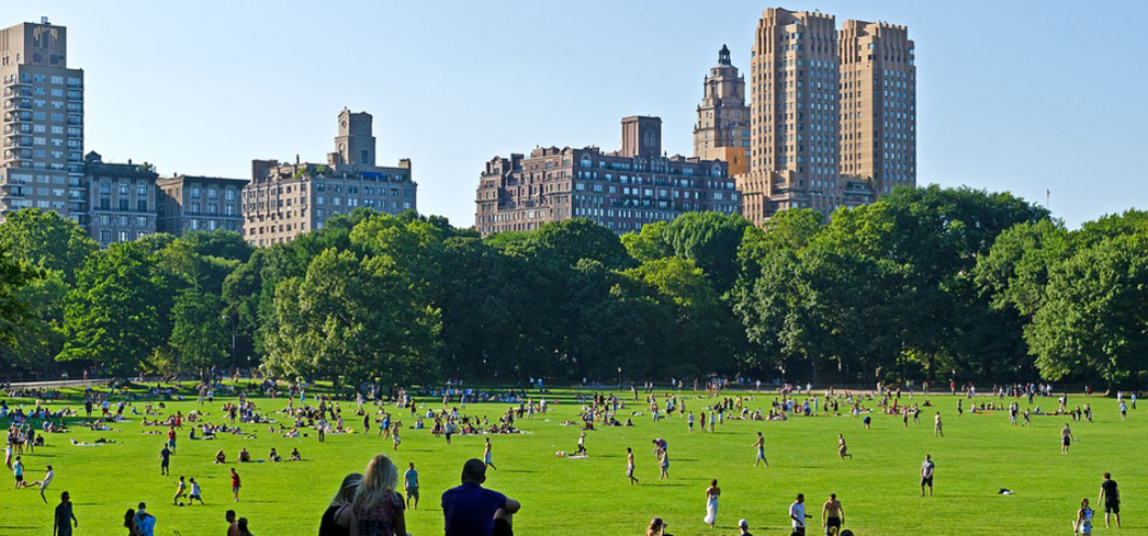 The world's most famous park lies in the center of a city of more than 8 million people