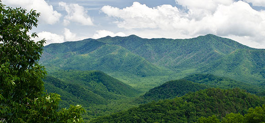 The Great Smoky Mountains are a subrange of the Appalachian Mountains and the park has made great efforts to protect its history