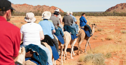 The Pyndan Camel Tracks tour in Alice Springs