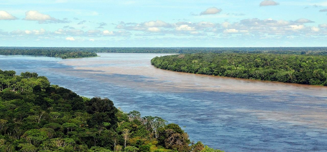 A view of the Amazon